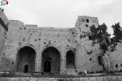 زياد جيوسي